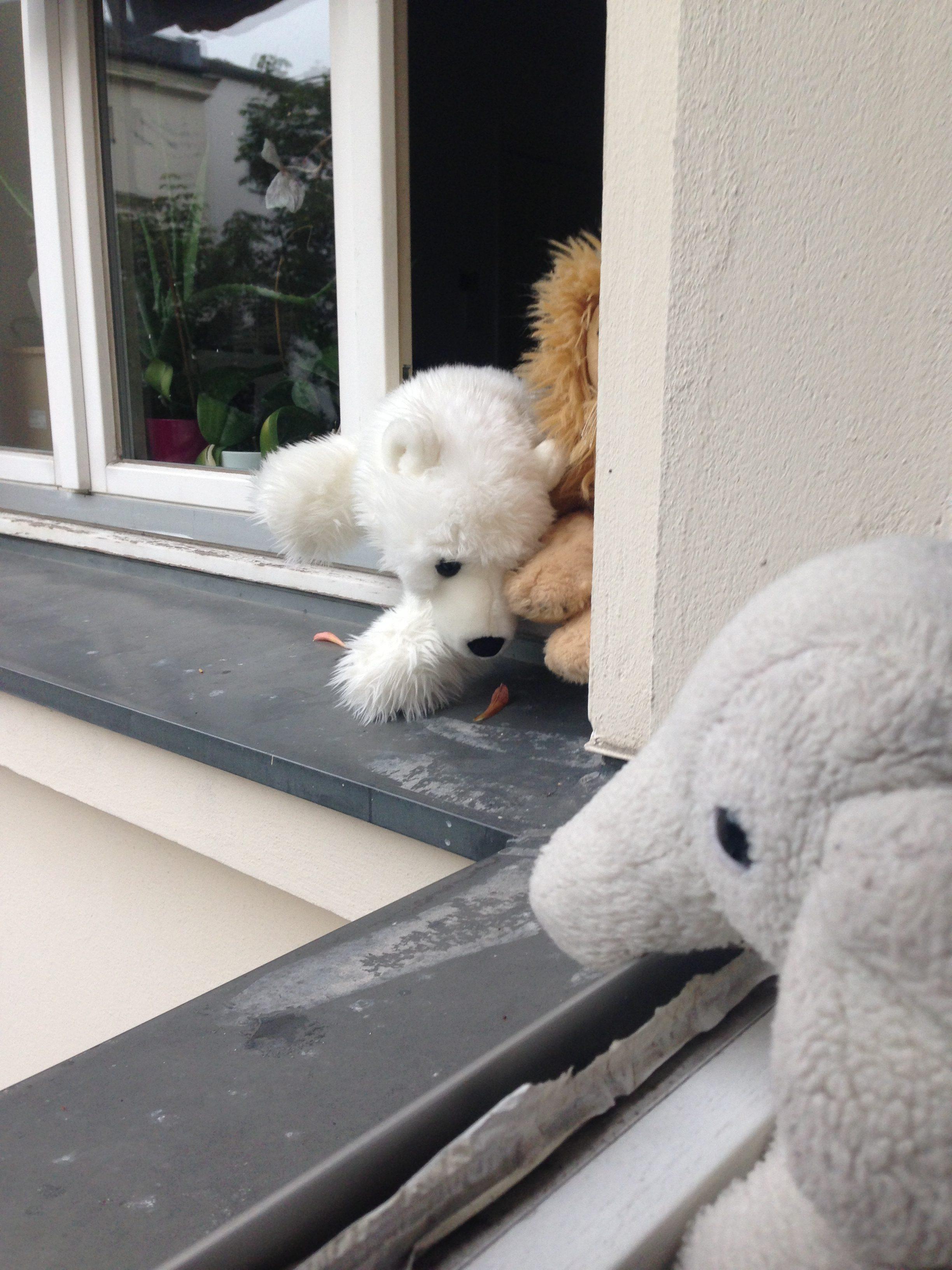 Stofftiere unterhalten sich am Fenster